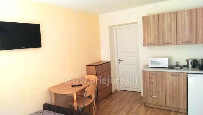 Study for rent in Juodkrante - 8