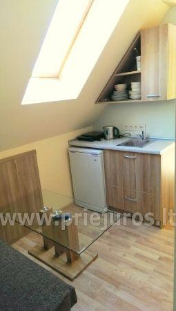 Study for rent in Juodkrante - 9