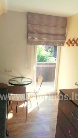 Study for rent in Juodkrante - 11