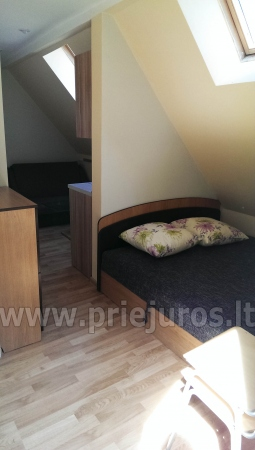 Newly furnished rooms for rent in Juodkrante, Wi-Fi - 9
