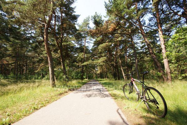 Seaside bicycle path