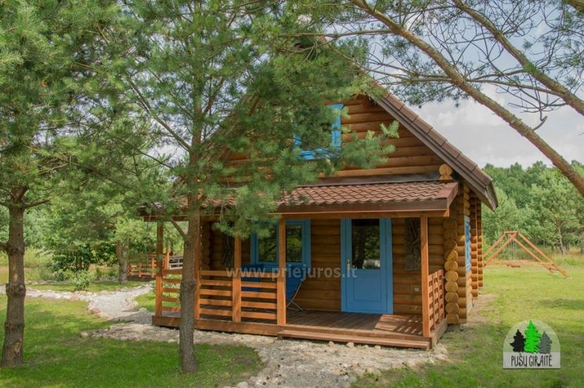 Log villa with sauna for 6-8 persons Pusu giraite - 1