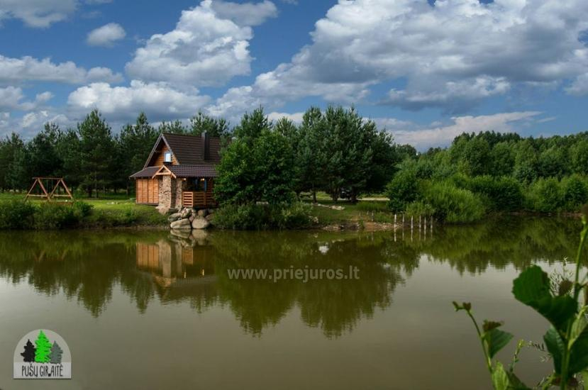 Koka karkasa māja ar saunu 6-8 personām Pusu giraite - 9