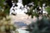Kiemelyje - vaizdas į Parnidžio kopą