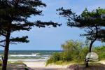 Holiday rooms for rent in Palanga - 6