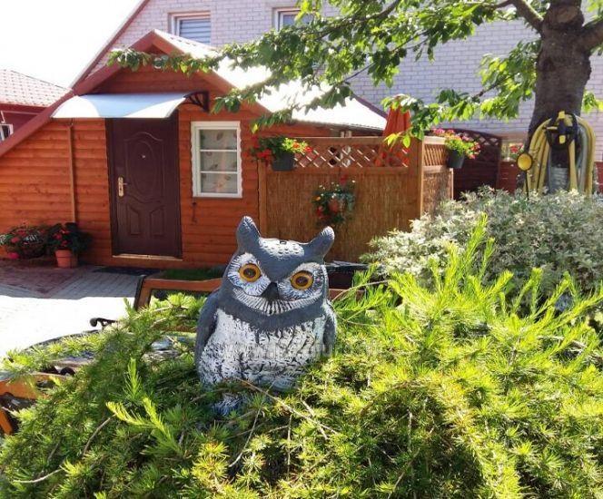 Pension in Sventoji Owl and Owlet - 2