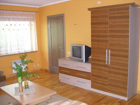 Apartment in Preila, in Curonian Spit, near the Baltic sea - 2