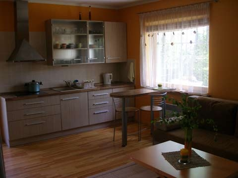 Apartment in Preila, in Curonian Spit, near the Baltic sea - 5