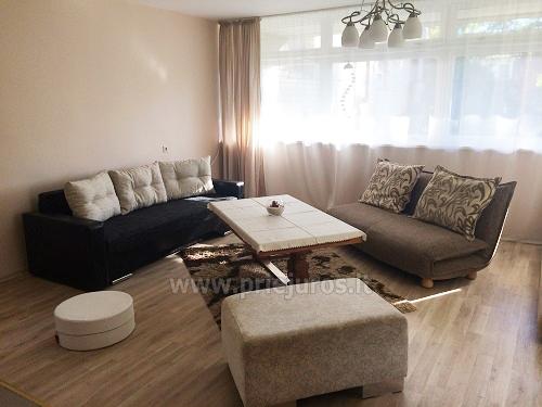 Vieno kambario, butas-studija Pervalkoje - 6