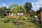Holiday house in Kunigiskes and 2 rooms apartment in Palanga
