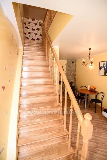 Yzzi apartamentai (45m²+ mansarda ir balkonas) nuomai Palangoje - 6