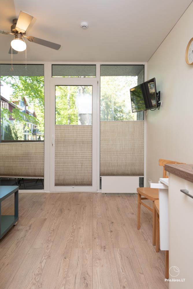 Apartment Santauta for rent in Juodkrante, Curonian Spit - 6