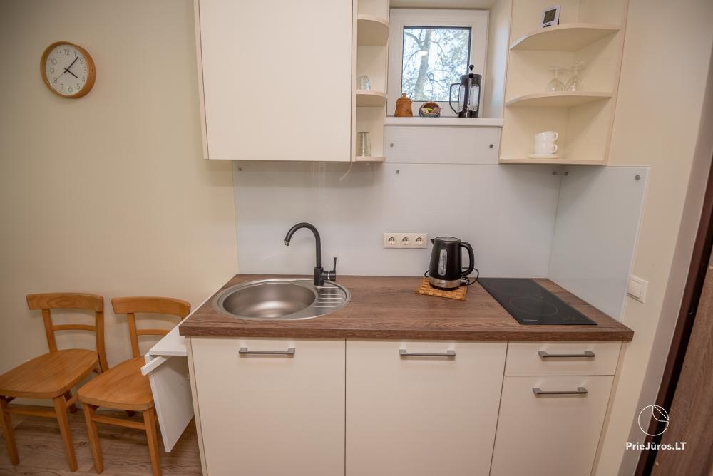 Apartment Santauta for rent in Juodkrante, Curonian Spit - 3