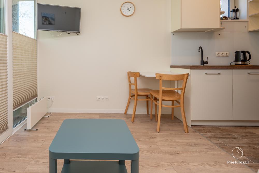 Apartment Santauta for rent in Juodkrante, Curonian Spit - 4