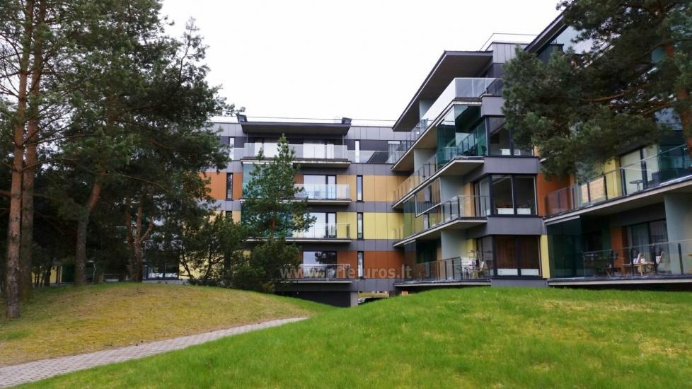 Palanga Green Apartment - 2