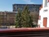 Naujai, šiuolaikiškai įrengti Daukanto apartamentai su jaukia terasa. 500m iki jūros! - 7