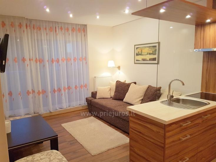 Modern furnished Daukanto apartment with cosy terrace - 5