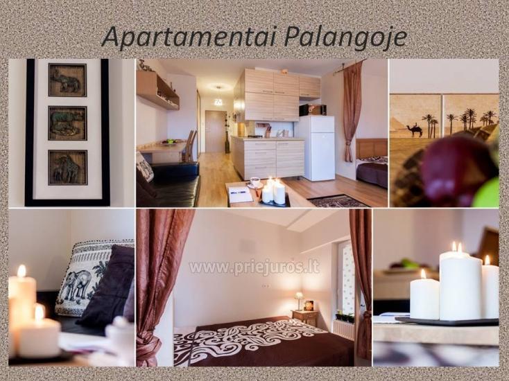 1 kambario, 4 miegamųjų vietų butas Vanagupėje - 1