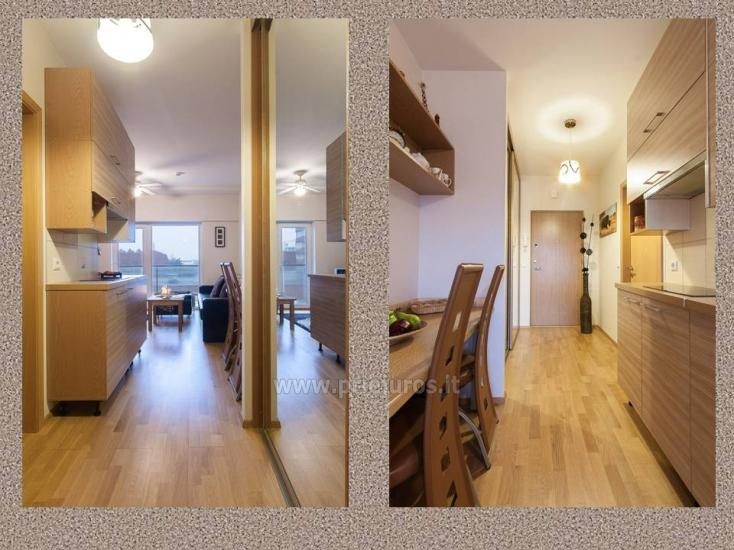 1 kambario, 4 miegamųjų vietų butas Vanagupėje - 2