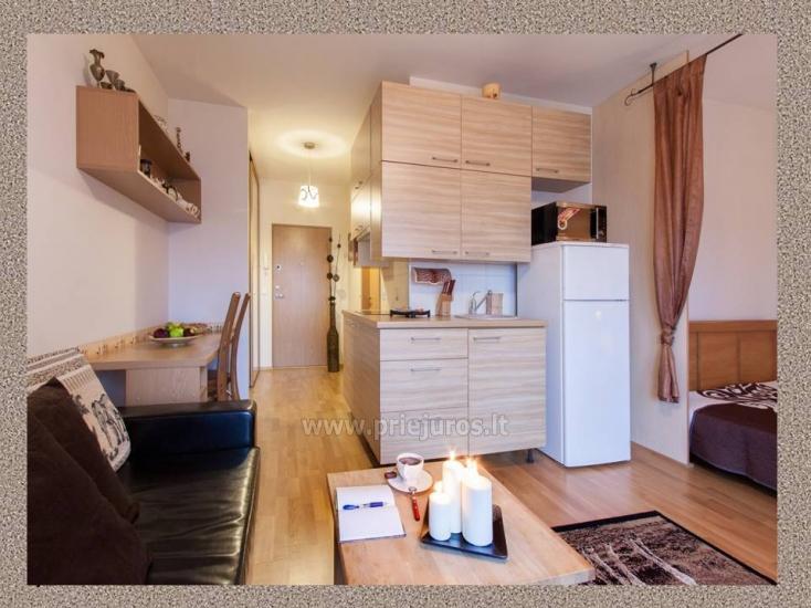1 kambario, 4 miegamųjų vietų butas Vanagupėje - 3