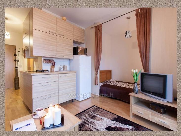 1 kambario, 4 miegamųjų vietų butas Vanagupėje - 4
