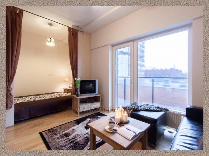 1 kambario, 4 miegamųjų vietų butas Vanagupėje - 5