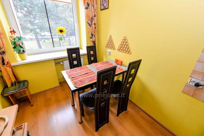 Three rooms apartment in the center of Nida, Curonian Spit, Lithuania - 12