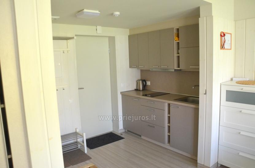 Neue und gemütliche Wohnung ein Zimmer in Preila, Kurische Nehrung - 4