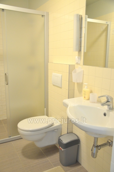 New and cozy one room apartment in Preila, Curonian Spit, Lithuania - 7