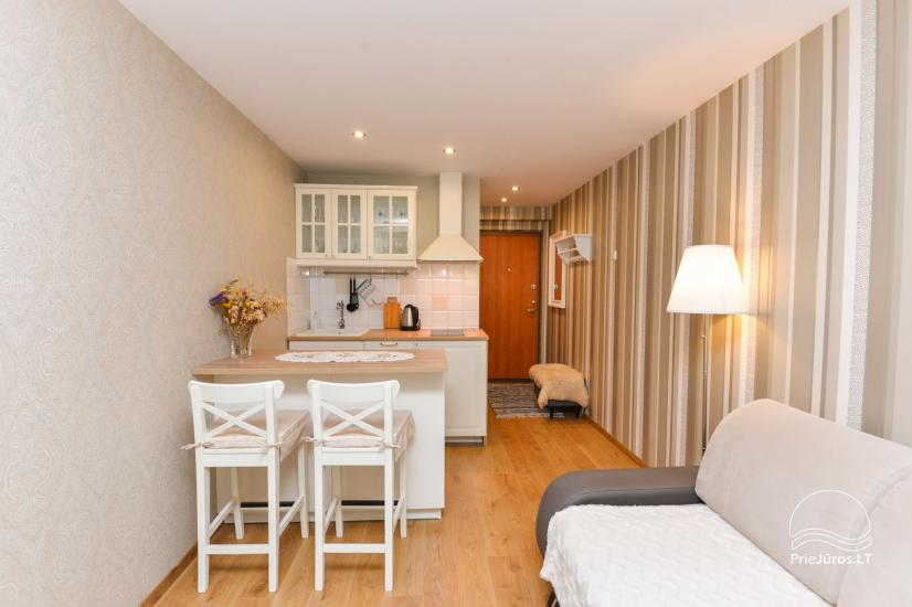 1 room flat rent in Nida - 2