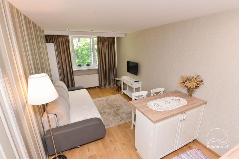 1 room flat rent in Nida - 5
