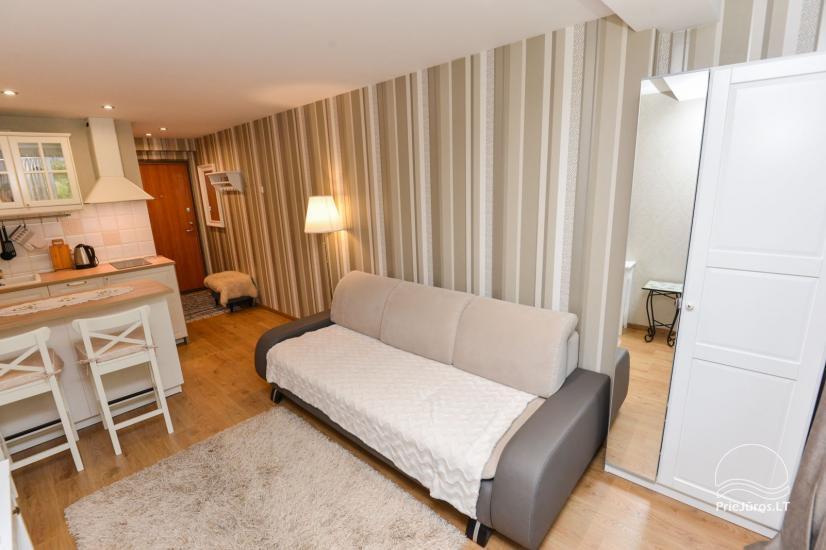 1 room flat rent in Nida - 8