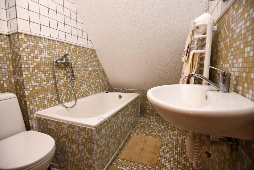 Villa Prie Peterso tilto in Rusne: accommodation, restaurant - 5