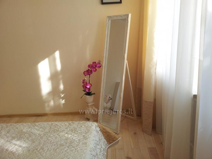 Wohnungen zur Miete in Klaipeda, in Litauen - 7