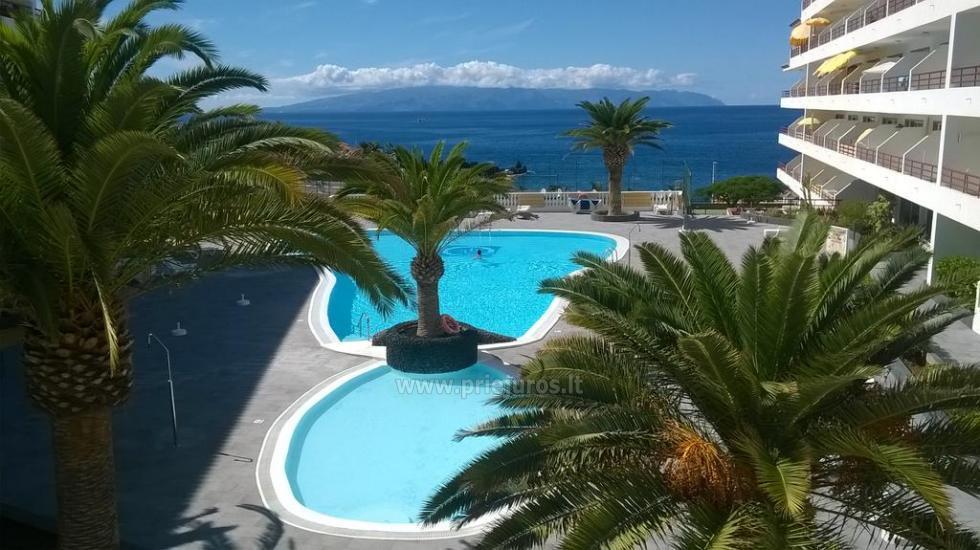 Tagara apartment in south Tenerife - 3