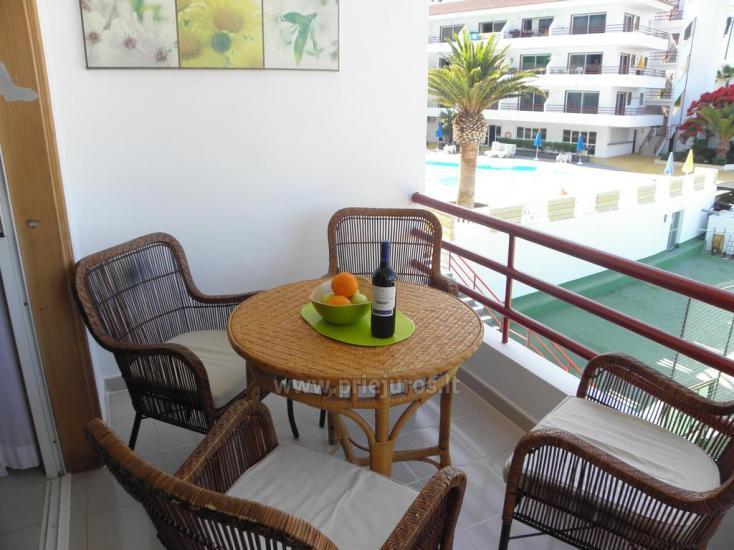 Tagara apartment in south Tenerife - 4