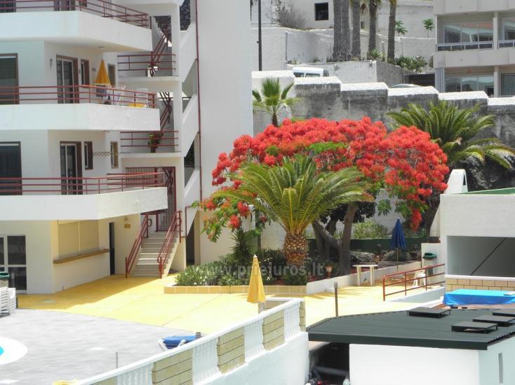 Tagara apartment in south Tenerife - 5
