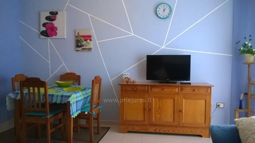Tagara apartment in south Tenerife - 7