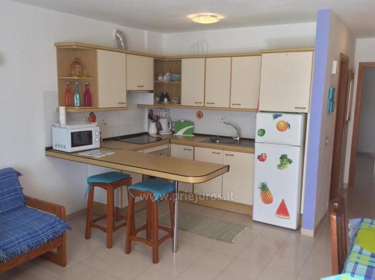 Tagara apartment in south Tenerife - 9
