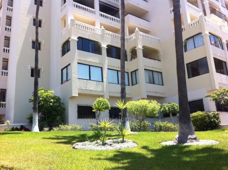Apartamentų nuoma Tropic Apartments