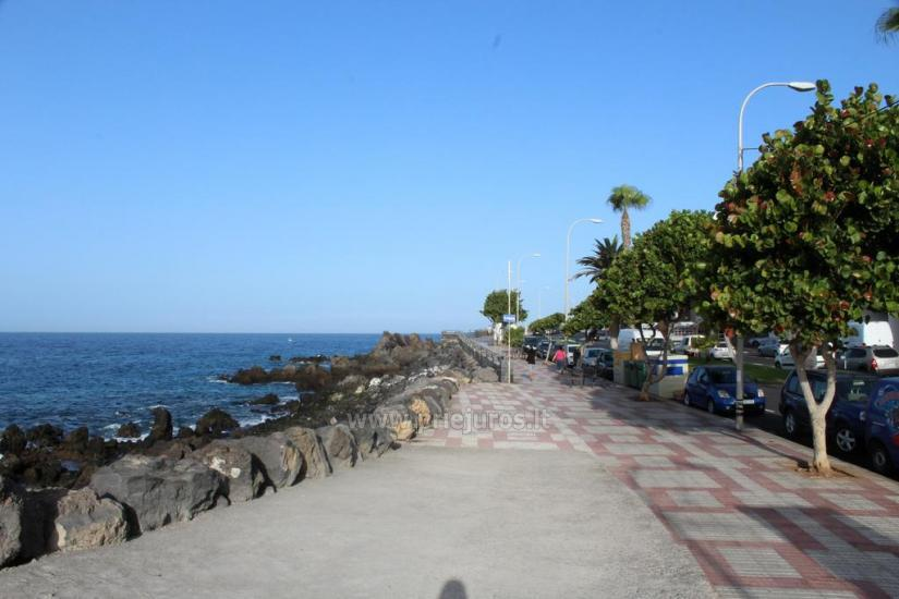 Apartment House Teide in Tenerife south - 2