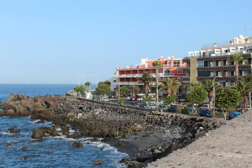 Apartment House Teide in Tenerife south - 3