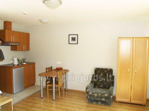 1 kambario apartamentas su balkonu, mini virtuve
