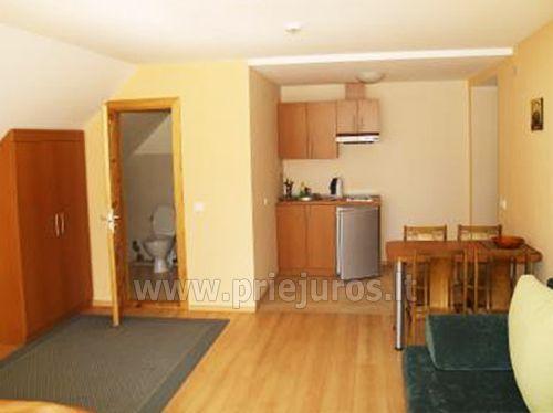 1 kambario trivietis apartamentas su balkonu, mini virtuve