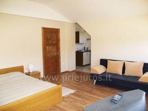 1 kambario trivietis apartamentas su mini virtuve