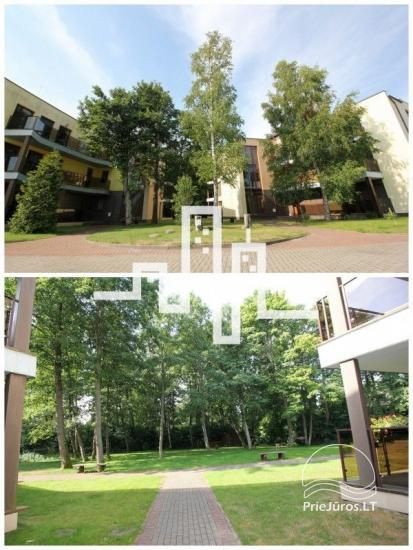 Apartments for rent in Palanga Apartments Palanga - 6