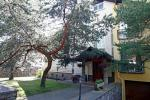 Birutes Villa. Guest House in Palanga near the pine forest, 800m from the sea