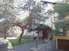 Birutės vila. Svečių namai Palangoje šalia pušyno, 800m iki jūros.