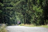 Kuršių Nerijos dviračių takai - 16