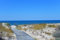 Kuršių Nerijos paplūdimiai ir kopos - 2